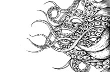 Tentacle Hand Draw On White Ba...