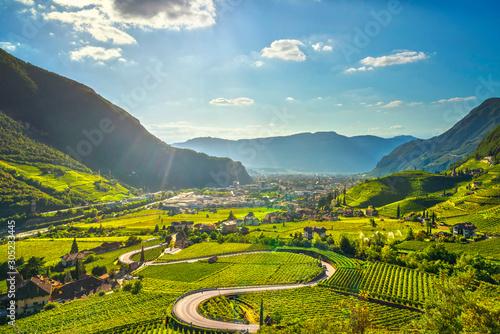 Vineyards view in Santa Maddalena Bolzano Canvas Print