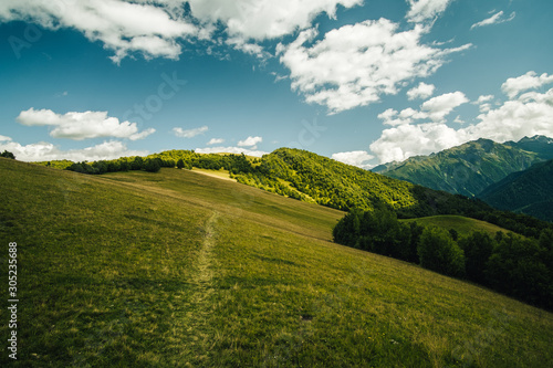 Obraz Path between foPath on meadow in mountains. Photo from hike in Svaneti region, Georgia, from Mestia to Ushguli.rest and meadow with Julian Alps in the background, Slovenia. - fototapety do salonu