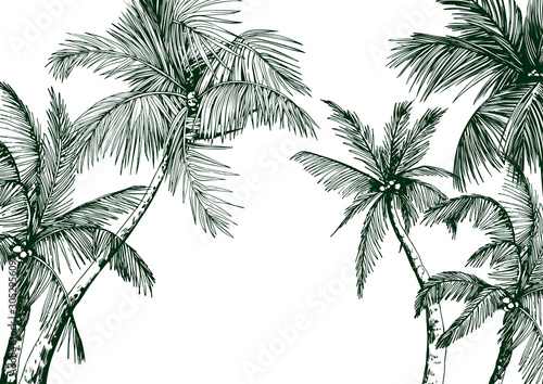 Photo Tropical card with green palm trees