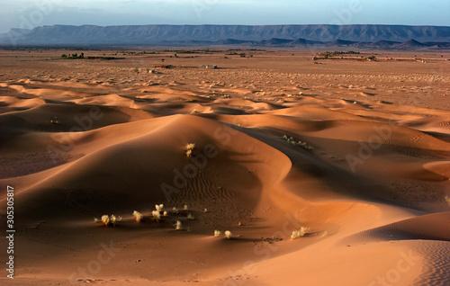 a little piece of the Sahara  Zagora region  Morocco