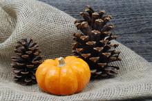 Pumpkin With Pine Cones On Bur...
