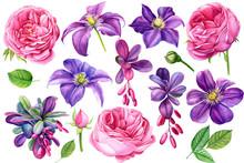Set Beautiful Flowers Purple C...