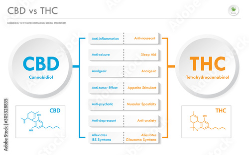 CBD vs THC Medical Applications horizontal business infographic illustration about cannabis as herbal alternative medicine and chemical therapy, healthcare and medical science vector Wallpaper Mural