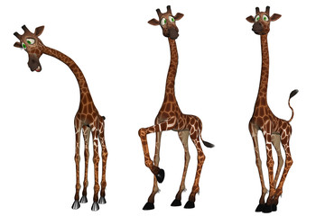 Set of three cartoon Giraffes isolated on white, 3d render.