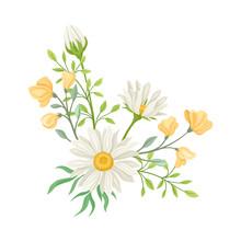 Daisy Flowers Vector Compositi...