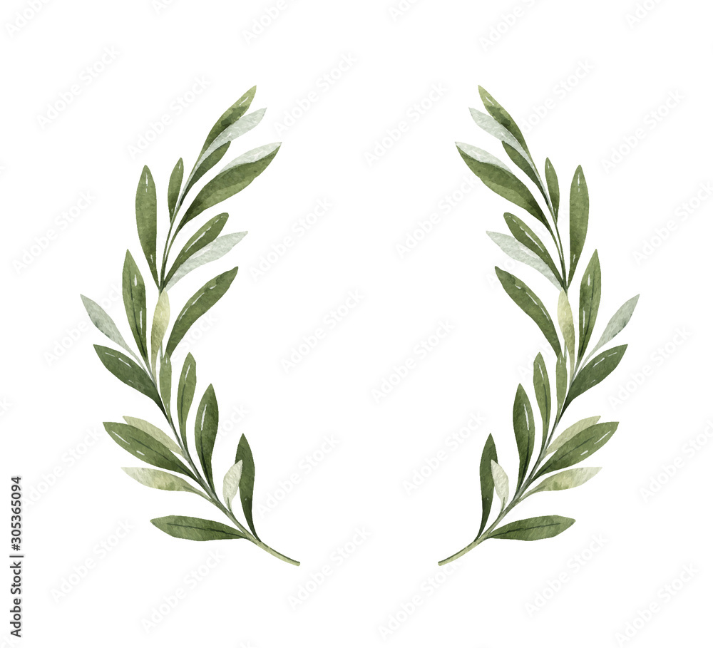 Fototapeta Watercolor vector wreath of olive branches and berries.
