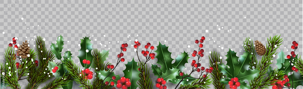 Fototapeta Isolated winter Christmas nature banner