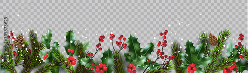 Fotografia  Isolated winter Christmas nature banner