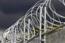 Security Fence With Razor Wire Top