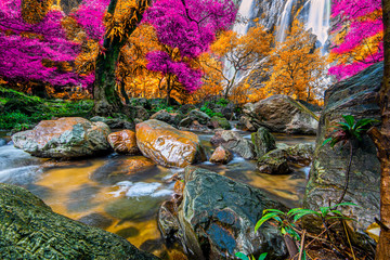Panel Szklany Las Amazing in nature, beautiful waterfall at colorful autumn forest in fall season