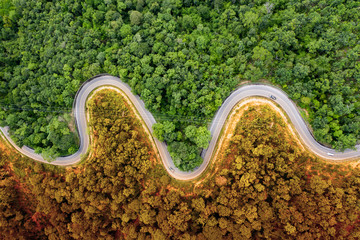 Winding road in the forest. Autumn, summertTop down aerial view.