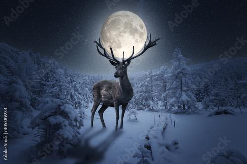 Cuadros en Lienzo Großer märchenhafter Hirsch steht in einer Winterlandschaft