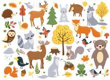 Woodland Animals Set, Cute Fox...