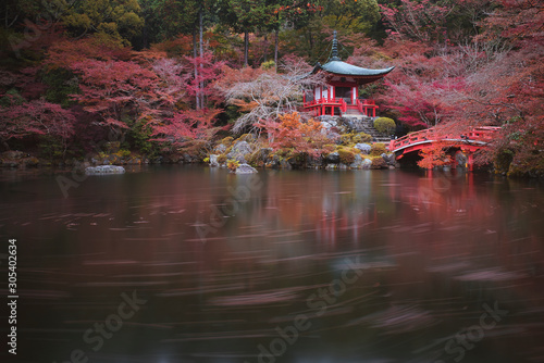 Photo Stands Zen Autumn season,The leave change color of red in Temple, Kyoto, Japan