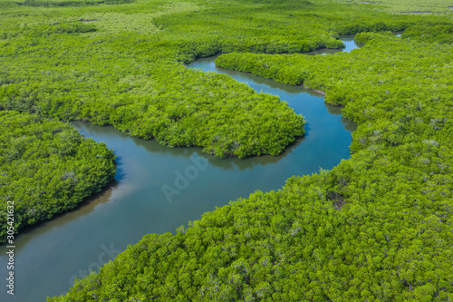 Montage in der Fensternische Pistazie Aerial view of mangrove forest in Gambia. Photo made by drone from above. Africa Natural Landscape.