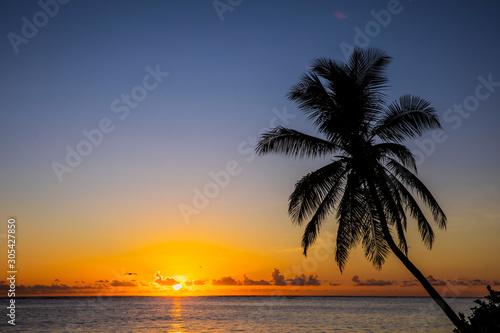 Fototapety, obrazy: Punta Cana