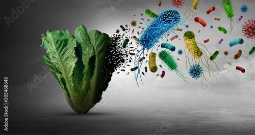 Fototapeta Vegetable Bacteria Danger obraz