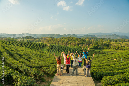 Photo Group of fellow backpackers come to stand in the tea plantations on the hills and admire the organic tea plantations