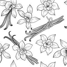 Vanilla Flowers. Vector Seamless Pattern. Vintage Style