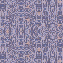 Detailed Seamless Pattern Back...