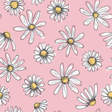 Hand Drawn Seamless Vector Pattern With Chamomile Flowers. Colored Daisy As Childish Drawing With Black Doodle Stroke On A Pink Background