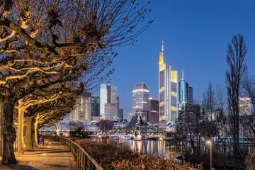 Frankfurt am Main, Plane Trees, River, Skyline, Night, Germany