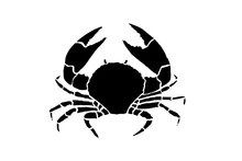 Graphical Crab Isolated On Whi...
