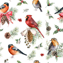Watercolor Christmas Birds And...