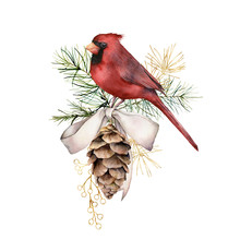 Watercolor Christmas Golden Composition With Cardinal And Bow. Hand Painted Winter Card With Bird, Fir Cone Isolated On White Background. Holiday Illustration For Design, Print, Fabric Or Background.