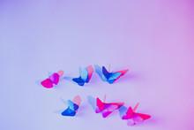 Pink And Blue Butterflies Atta...