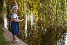 Little Girl In Denim Overalls And A White T-shirt Feeds Geese With Bread.