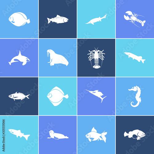 Seafood icon set and harbor seal with grouper fish, scad and arctic char fish Slika na platnu