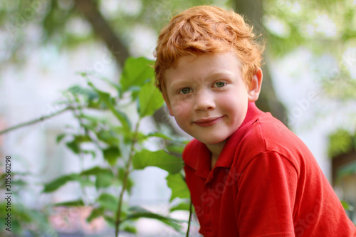 Fototapeta European boy with green eyes looking directly at the camera, close-up. Funny little child with curly ginger hair and freckles sitting on a tree. Fashion kid. Red casual shirt. Summer weather obraz