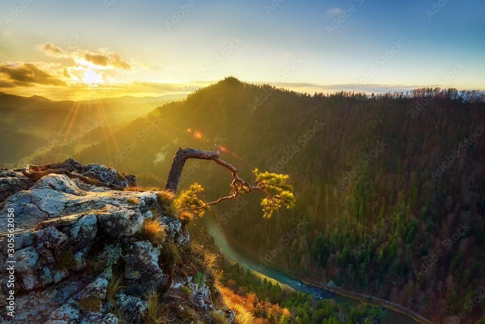 Piękny wschód słońca na wzgórzu Sokolica w polskich górach <span>plik: #305562058 | autor: Piotr Krzeslak</span>