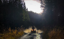 ATV'ing In The Forest