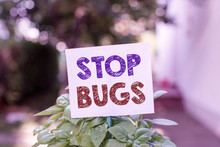 Word Writing Text Stop Bugs. Business Photo Showcasing Get Rid An Insect Or Similar Small Creature That Sucks Blood Plain Empty Paper Attached To A Stick And Placed In The Green Leafy Plants