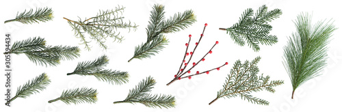 Christmas fir branches and berry set isolated on white background, element for decoration of christmas Wallpaper Mural