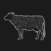 UK Meat Cuts Diagram Poster Design. Beef Scheme For Butcher Shop Vector Illustration. Cow Animal Silhouette Vintage Retro Hand Drawn Chalk Style Graphic.