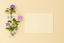 Beautiful Purple Viola Flowers And Blank Yellow Card.Flat Lay, Top View, Copy Space.