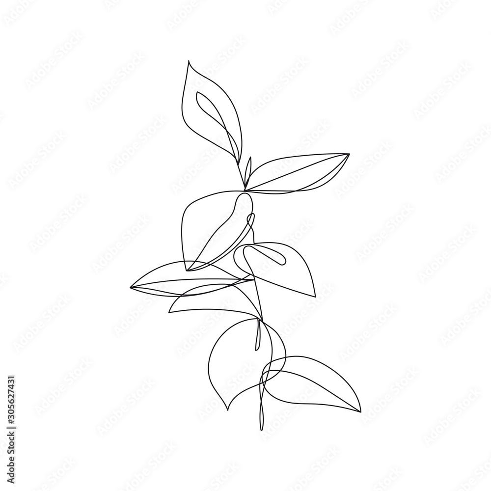 Fototapeta Continuous One Line Drawing. One Line Flowers Abstract Illustration. Simple One Line Plant Drawing. Botanical Nordic Sketch. Vector EPS 10.