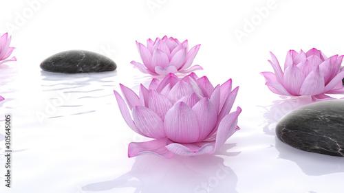 3d-odplacajaca-sie-zdroj-ilustracja-lotos