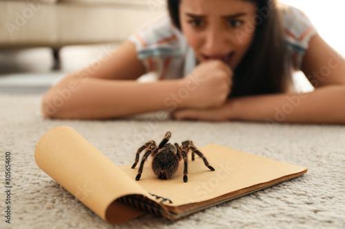 Photo Young woman and tarantula on carpet