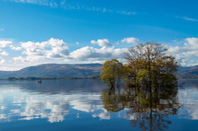 Autumn Colours On Loch Lomond ...