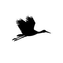 Silhouette Of Flying Stork. Animal Bird.