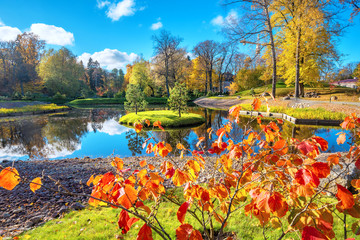 Park Kadriorg with small pond at golden autumn. Tallinn, Estonia