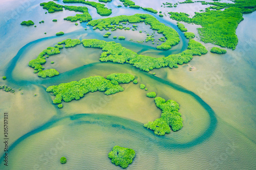 Foto auf AluDibond Olivgrun Senegal Mangroves. Aerial view of mangrove forest in the Saloum Delta National Park, Joal Fadiout, Senegal. Photo made by drone from above. Africa Natural Landscape.