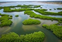 Senegal Mangroves. Aerial View...