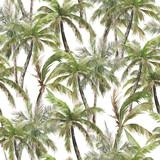 Akwarela bezszwowe wzór. Letnie palmy tropikalny tło. Akwarela druk w dżungli - 305765075