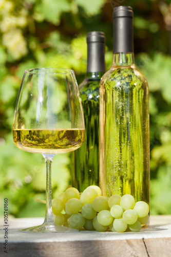Fotografie, Obraz  White grape and wine
